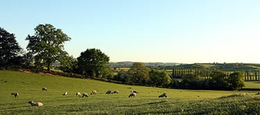 Northamptonshire countryside