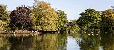 Alexandra Park, Oldham